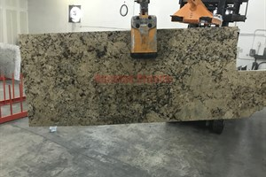 Desert Amarello Granite 58