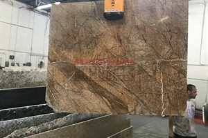 Rainforest Brown Marble 56